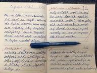 Výuka českého jazyka doma už nemůže být snadnější